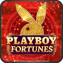 Playboy-Fortunes-™