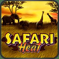 Safari-Heat