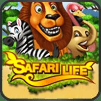 Safari-Life