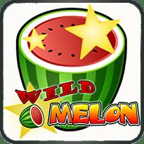 Wild-Melon