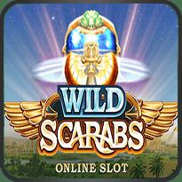Wild-Scarabs