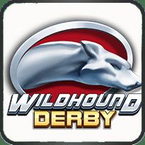 Wildhound-Derby